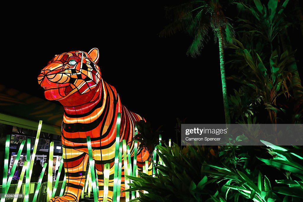 A Sumatran Tiger light sculpture is displayed during a media preview of Vivid Sydney illuminated displays at Taronga Zoo on May 24, 2016 in Sydney, Australia. Vivid is lighting up at Taronga Zoo for the first time with ten giant animal sculptures representing critical species the zoo is committed to protecting. Held annually, Vivid Sydney is the world's largest festival of light, music and ideas running for 23 days.
