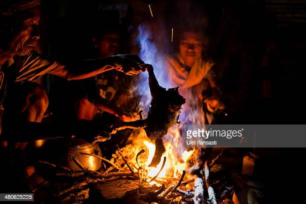 Sumbanese man burns a chicken for skins before reading a chicken organ to predict the future by a Rato's during the pasola war festival at Wainyapu...