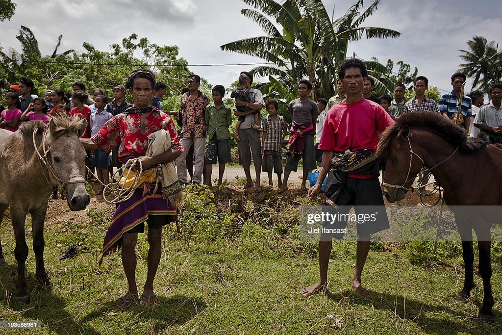 Sumbanese people attending to watch the pasola war festival at Waiha village on March 6, 2013 in Sumba Island, East Nusa Tenggara, Indonesia. Sandalwood pony horses are native to the island of Sumba in Indonesia. For the people of Sumba, the Sandelwood horse has an important role in all aspects of their daily life, including transportation and culture. On the island of Sumba the ancient tradition of Pasola still draws large crowds and tourists. Pasola involves two teams of men on horseback charging towards each other.