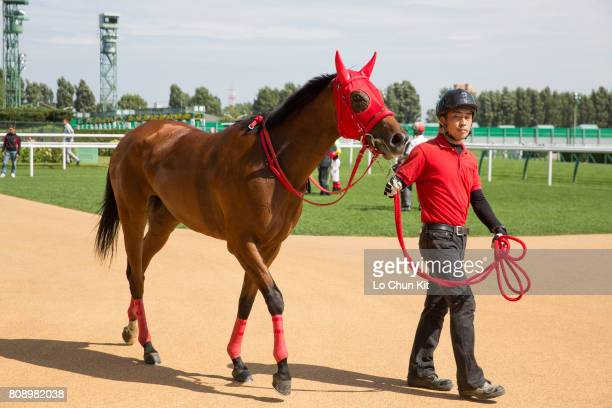 Sumire wins the Race 1 at Sapporo Racecourse on August 29 2015 in Sapporo Hokkaido Japan It is Joao Moreira first career win in Japan