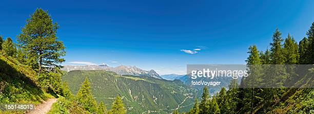 Summer Alpine trail pine forest mountain peaks panorama Switzerland