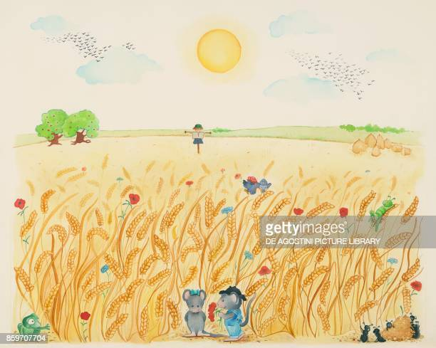 Summer animals in a wheat field children's illustration drawing
