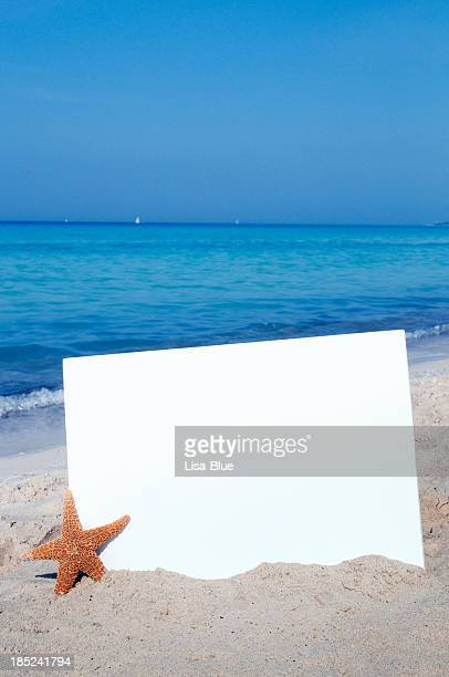 Summer Billboard W Starfish on the Beach