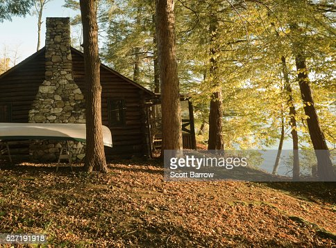 Summer cottage in the woods : Stock Photo