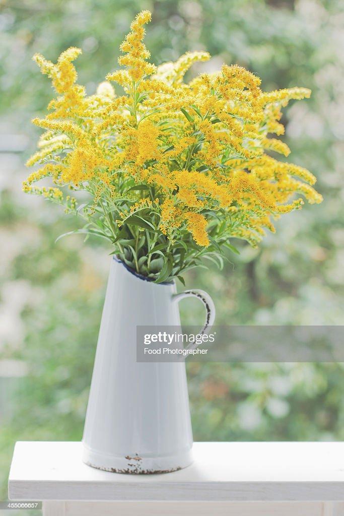 Summer flowers : Stock Photo