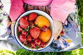 Little girl is holding a bowl with summer fruits and berries on her knees. Delicious lunch or picnic concept. Toned image. Flat lay style