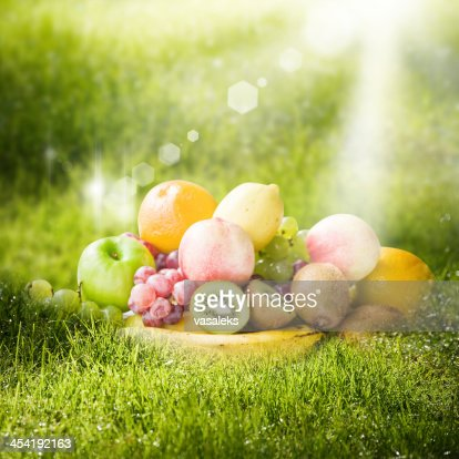 Summer fruits : Stock Photo