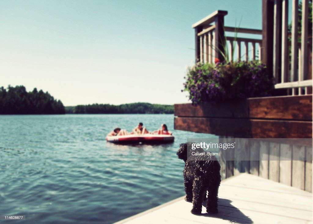 Summer fun at the cottage