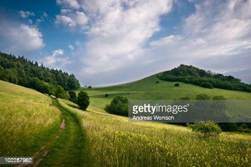 Summer Hills