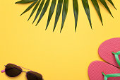 Summer holiday vacation background with beach accessories and green leaf of palm. Copy space. Top view