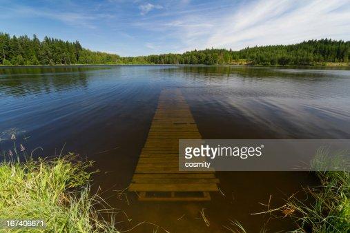 Summer lake : Stock Photo