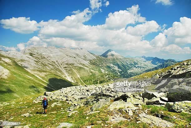 Summer landscape in Pirin mountain, Bulgaria