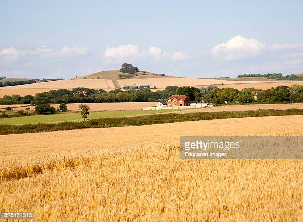 Summer landscape in the Vale of Pewsey view north east to Woodborough Hill near Alton Barnes Wiltshire England