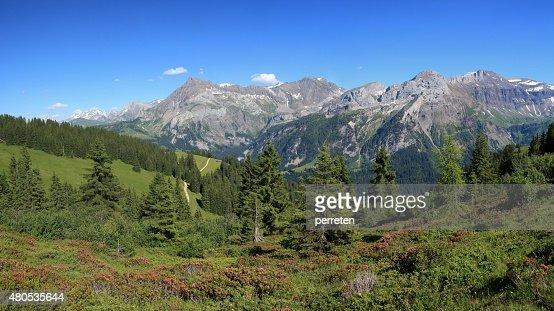 Summer landscape near Gstaad : Bildbanksbilder