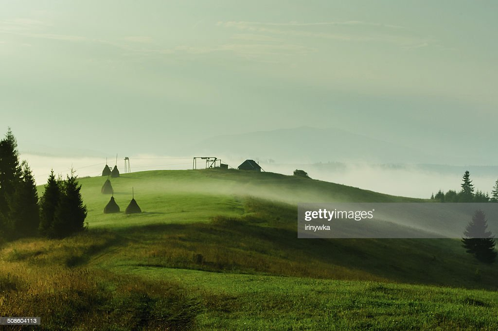 Summer landscape with foggy hills and green grass. : Stock Photo