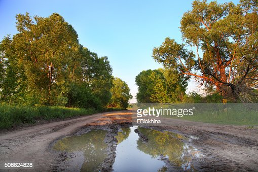 Summer landscape with the road after rain : Stock Photo