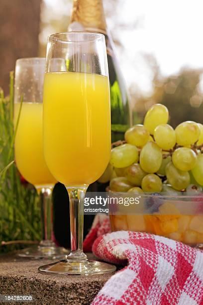 Mimosa d'été