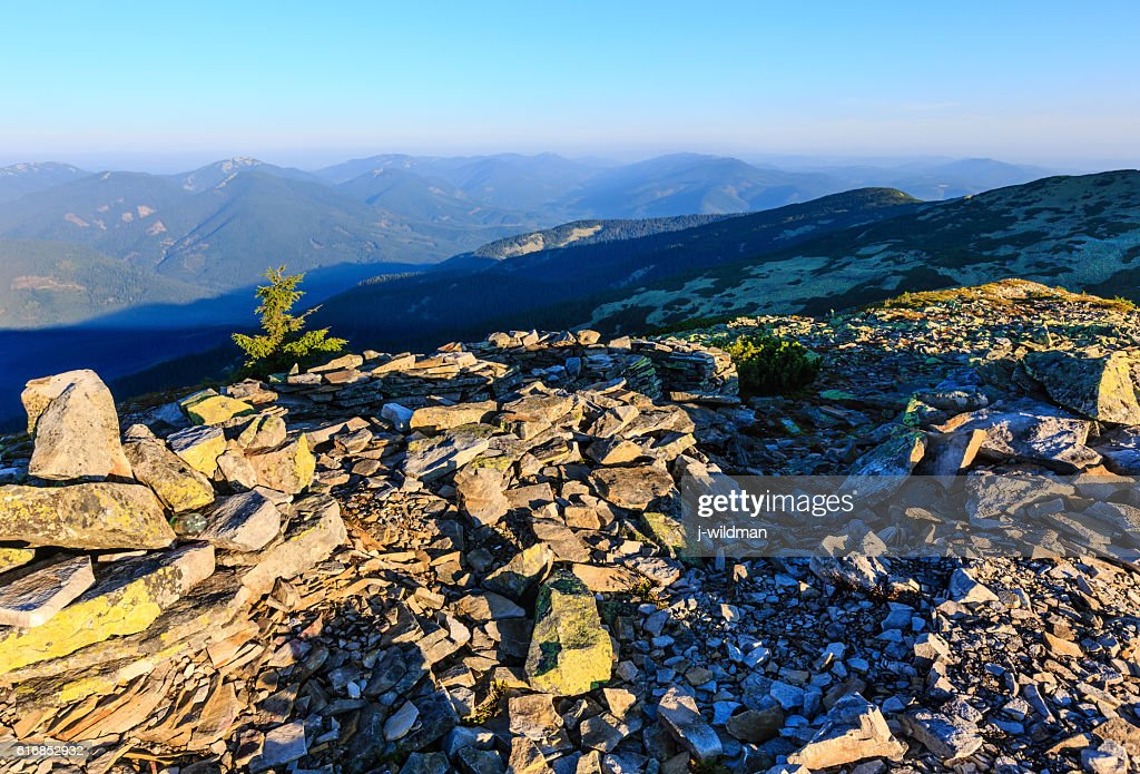 Summer morning mountain view (Carpathian, Ukraine). : Stock Photo