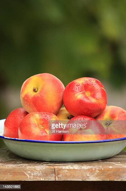 Summer nectarines and peaches