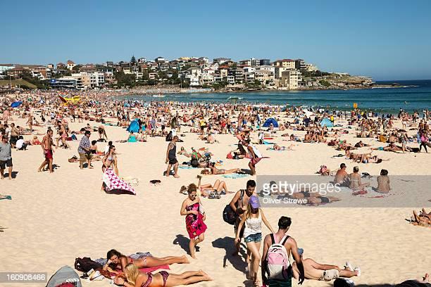 Summer on Bondi Beach