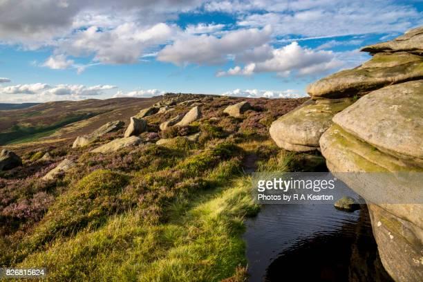 Summer on Derwent edge, Peak District, Derbyshire, England