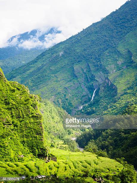 Summer paradise in the green Annapurnas of Nepal