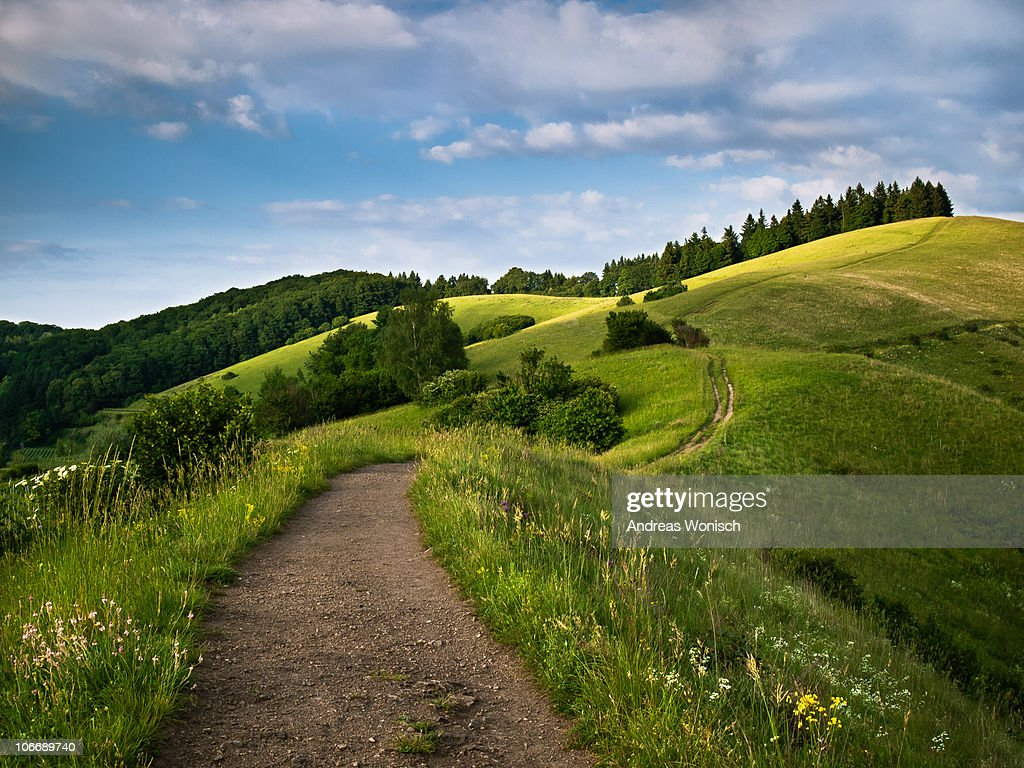 Summer Path over Rolling Hills : Stock Photo