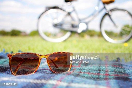 Summer Picnic at the park