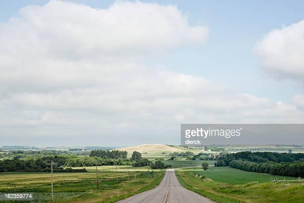 Summer Prairie Landscape