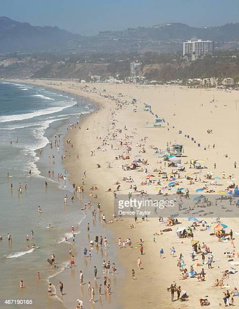 Summer - Santa Monica Beach