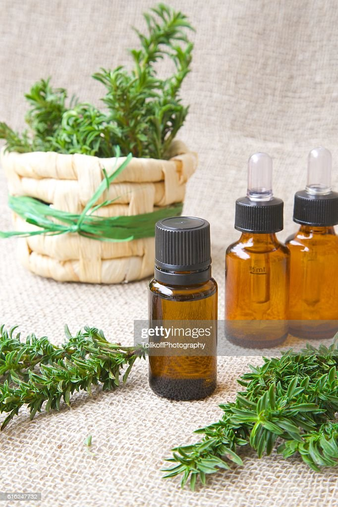 Summer savory essential oil : Stock Photo