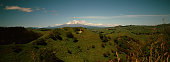 A summer scene showing Mount Ruapehu an active stratovolcano at the southern end of the Taupo Volcanic Zone 40 kilometres southwest of the southern...