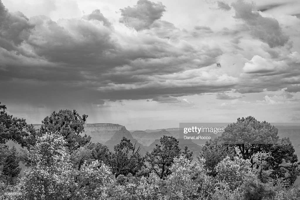 Summer Storm in the Canyon : Stock Photo