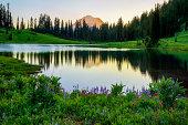 Summer Sunset at Lake Tipsoo