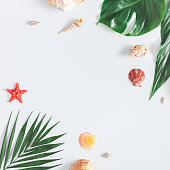 Summer tropical composition. Frame made of green tropical leaves and sea shells on gray background. Summer travel concept. Flat lay, top view, square, copy space