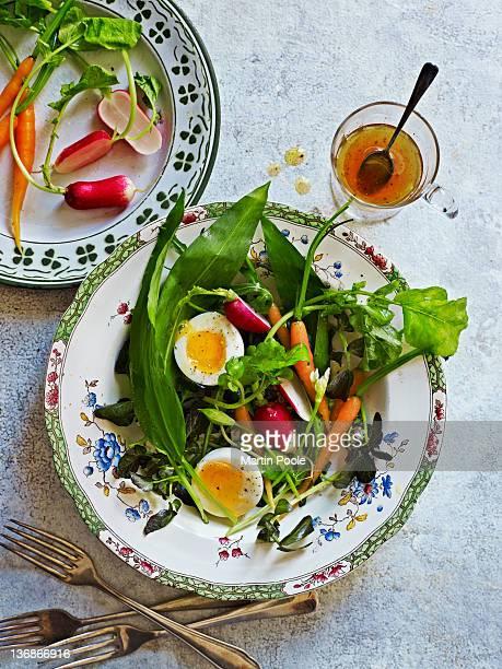 summer vegetable and wild garlic salad