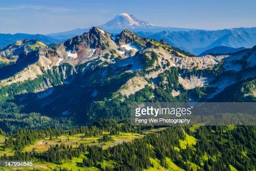 Summer Vista, Mount Rainier, Washington