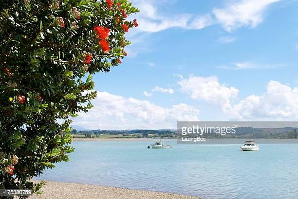 Summerscape, Grossi Point, Mapua, Tasman Region, NZ