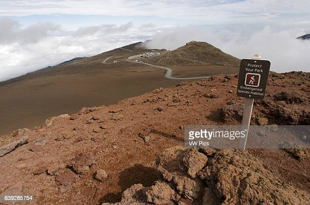 Summit of Puu Ulaula Maui Hawaii Summit of Puu Ulaula with departing several trekings foot or horseback to descend 900 meters into the bowels of the...