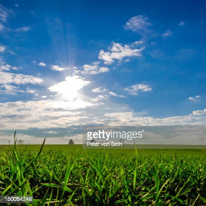 Sun against light above field : Stock-Foto