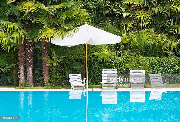 Sun chairs at swimming-pool