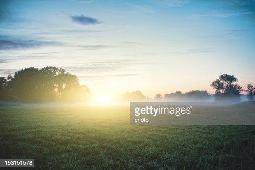Sun kisses fog