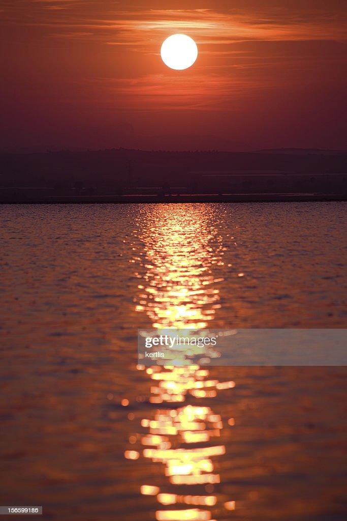 Sun : Stock Photo