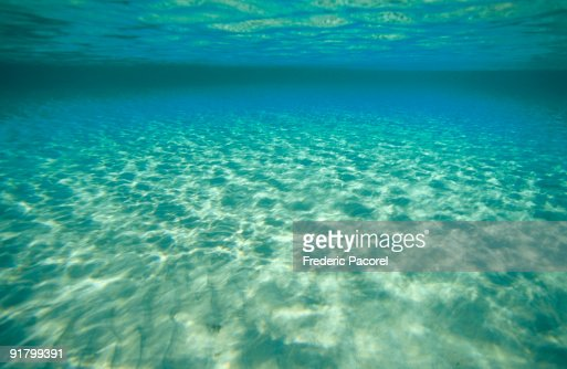 sun reflected in shallow ocean water stock photo getty