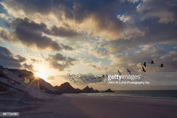 Sun rising in dramatic sky over beach
