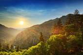 In the Great Smoky Mountains' Newfound Gap, the sun sets in the distance behind a series of large, gently sloping hills.  Green-orange rays of sunlight streak downwards, showering leafy foreground tre