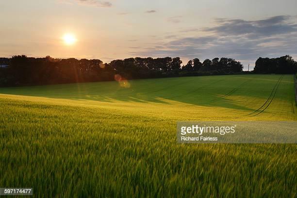 Sun setting over Hampshire