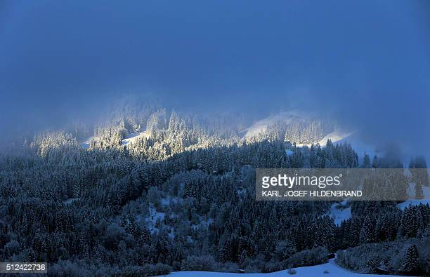 Sun shines through the fog rising from a snowy forest on the Ofterschwanger Horn mountain near Ofterschwang southern Germany on February 26 2016 /...