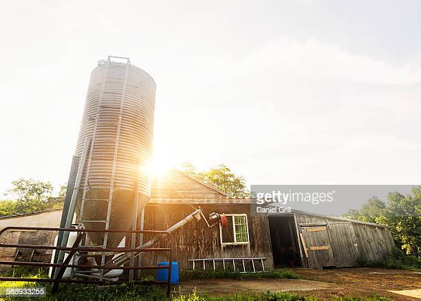 Sun shining over farm