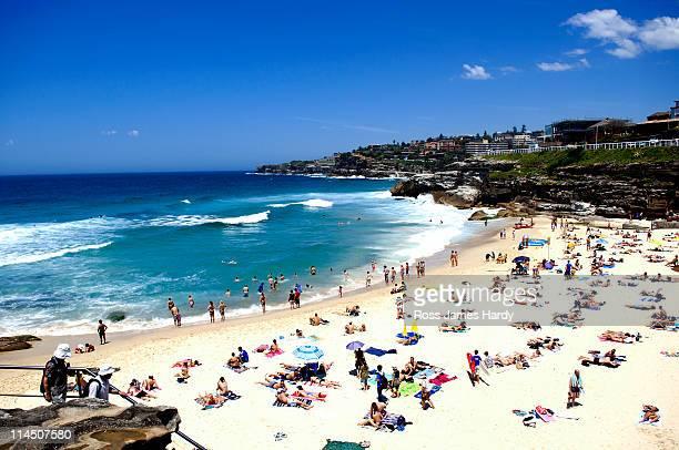 Sunbathers on Tamarama Beach